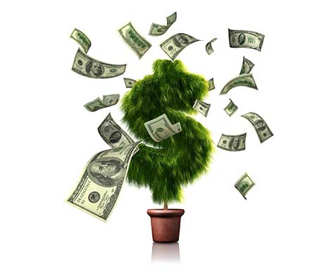 moneytree.optimized